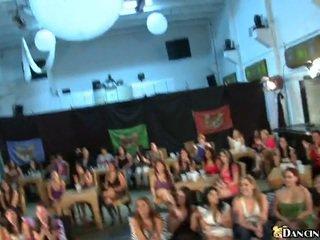 A párty kolo veľa holky