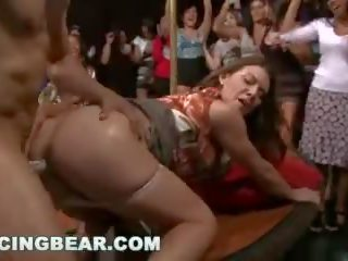 파티 파티 파티 와 그만큼 muthafucking 댄스 곰! (db10128)
