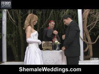 Mix of alessandra, mulékaté, senna by banci weddings