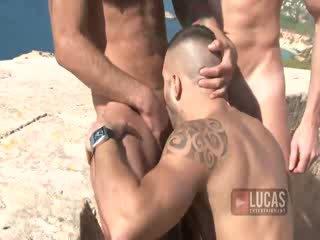 porno, scheiß-, blowjobs