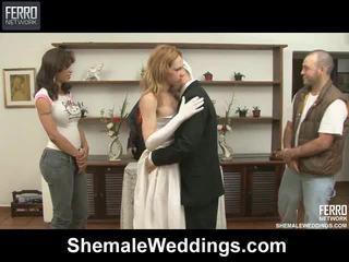 Blanda av filmer av shemale weddings