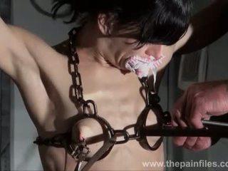 चूची tortured और caged slaveslut elise graves