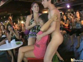 Naujas male stripper