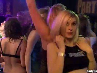 succhiare il cazzo, sesso di gruppo, gruppo orgia