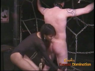 Extremely কামাসক্ত stallion likes being tied উপর এবং whipped