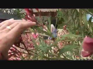 Lez sees the aias