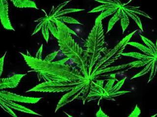 punk, smoke, kamień, grass