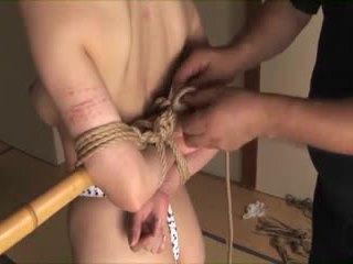 japanese, bdsm