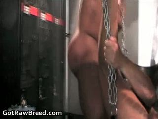 hottest small cock and beg tit nice, check gays porn sex hard, gay sex tv video new