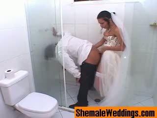 Bruna pajkos kétnemű menyasszony