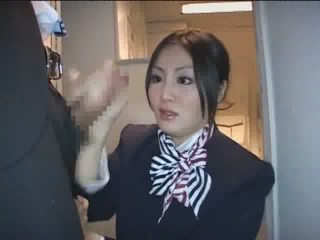 toate japonez, tu stewardess verifica