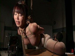 free bondage sex any, discipline fun, dominant see