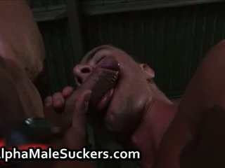 any first time fuck and suck hq, gay men fuck and suck, heroes fuck and suck most