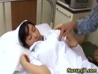 vse japonski koli, eksotična real, brezplačno medicinske sestre