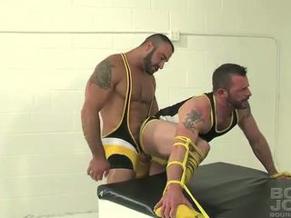 nice muscle all, bear, best anal