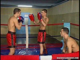 אנאלי קבוצה סקס ב the איגרוף ring