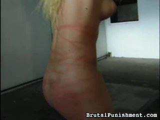 Liels kolekcija no bdsm porno videoklipi no brutālie punishment