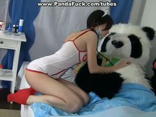 قذر جنس إلى شفاء ل مريض panda