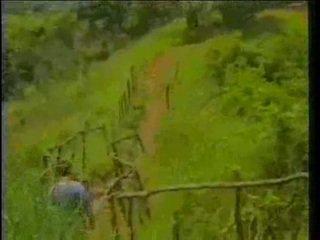 jahrgang, afrikaner, ebenholz
