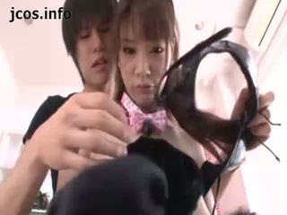 Playful יפני kitty
