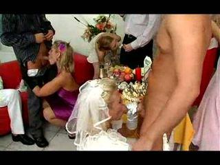 fucking, blow job, bride