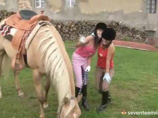 Fuckfest sa ang stables