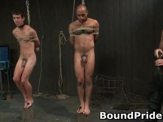 Homo Slaves Acquire Electro Therapy From Chaps