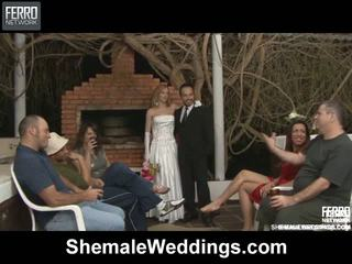 Alessandra matheus shemale bröllop kön
